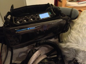 Sound Devices 633 und Kortwich Tasche