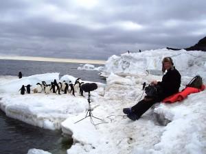 Chris Watson - Frozen Planet