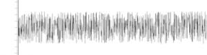 Jahrgangsgeräusche.de