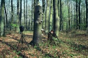 Tilgner in einem Buchenwald an der Ostsee (Foto: Heidrun Tilgner)
