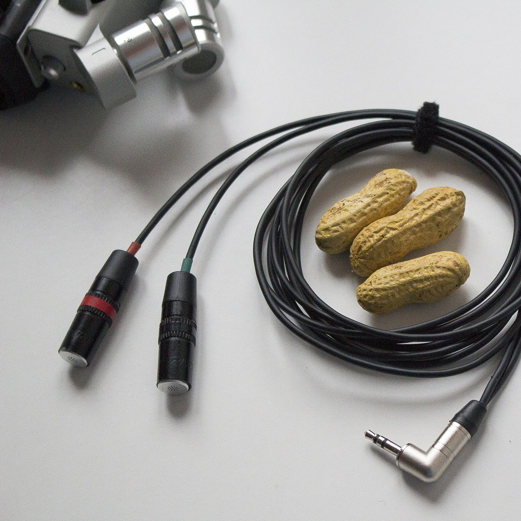 Lom Instruments Stellt Ui Microphones Vor Electret Microphone To Xlr Wiring Together With Sc4060 Dpa Unstruments