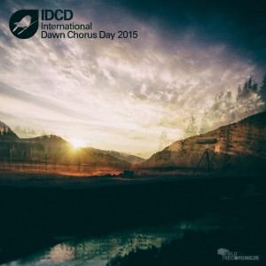 IDCD 2015 Album Cover Artwork